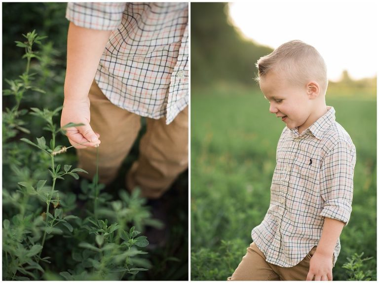 Small boy in a green field with Albuquerque Family Photographer.